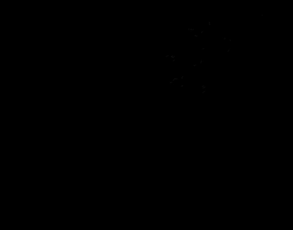 libelle-tr